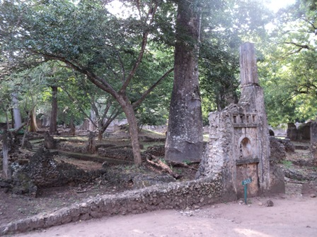 Gedi Ruins and Kipepeo Butterfly Project Tour