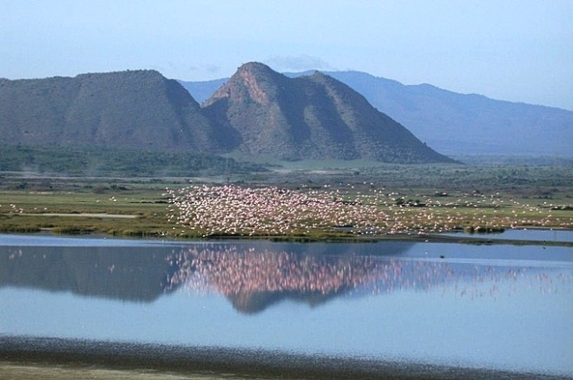 Lake Elmenteita Day Tour